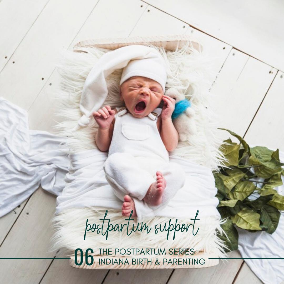 newborn photography blog banner- postpartum support