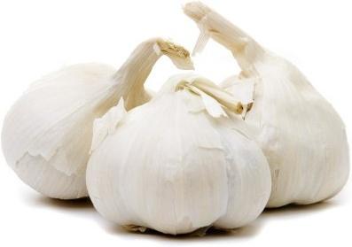 garlic bulbs image3.jpg