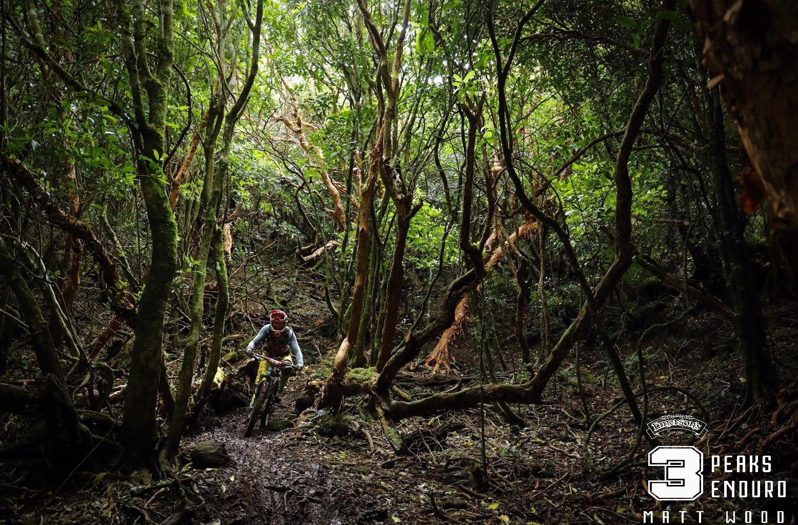 Mel Bloomfield Deep in the Dunedin green. Photo by Matt Wood.