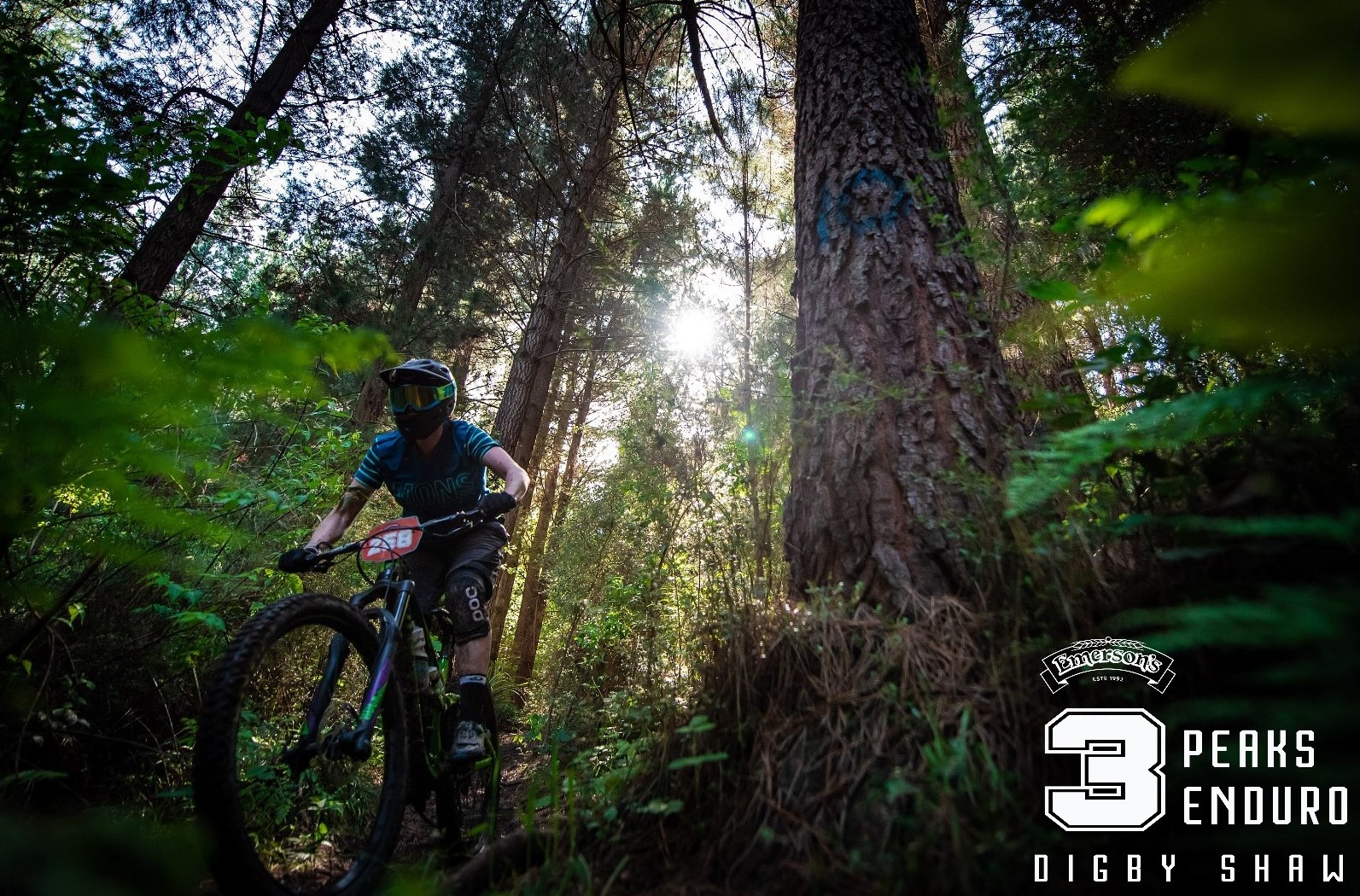 Jenna Makgill putting the pedal to the metal in the trees. Photo by Digby Shaw.