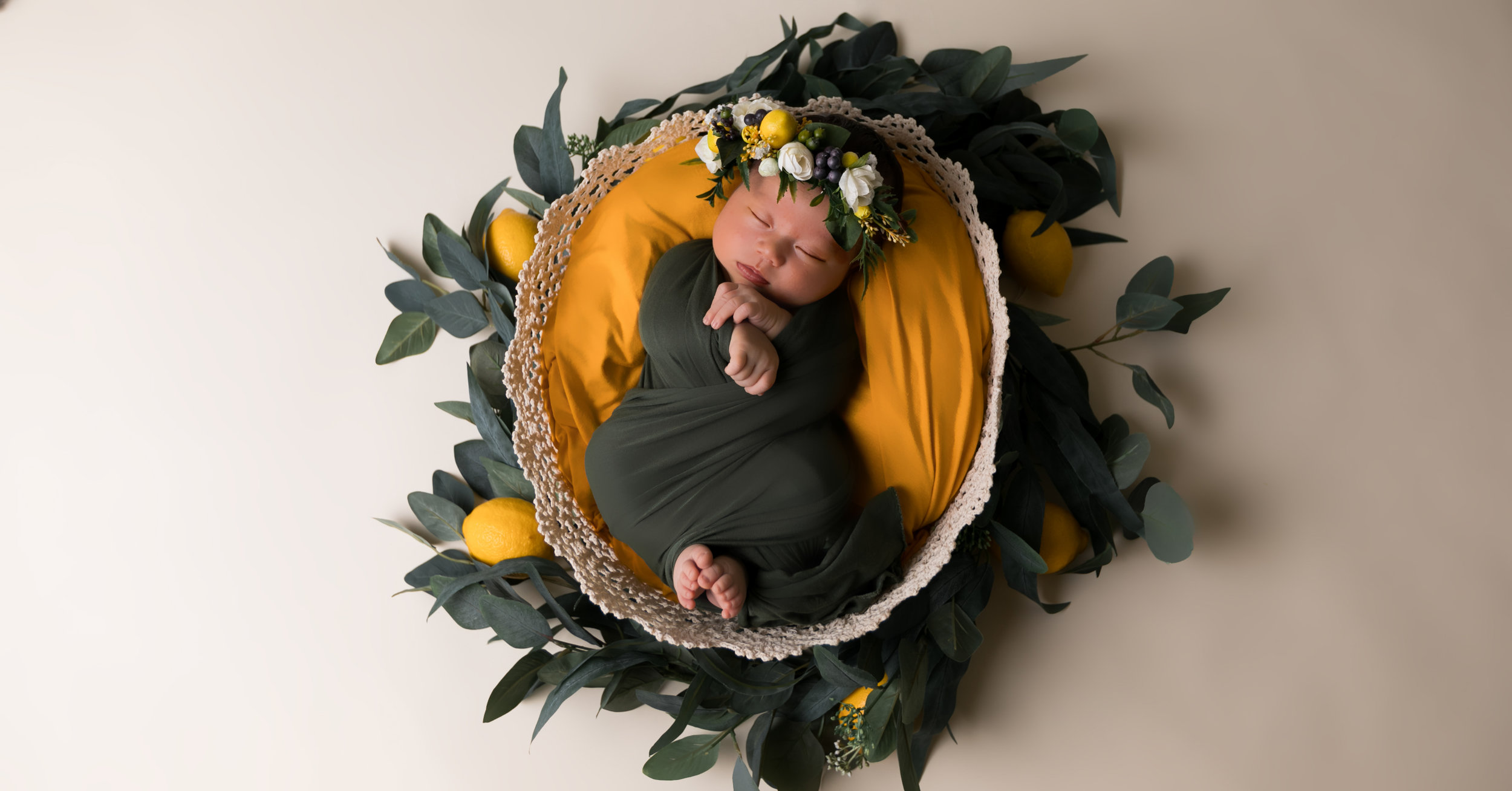 newborn photo shoot newborn studio photography kailua oahu hawaii storm elaine photography-1.jpg