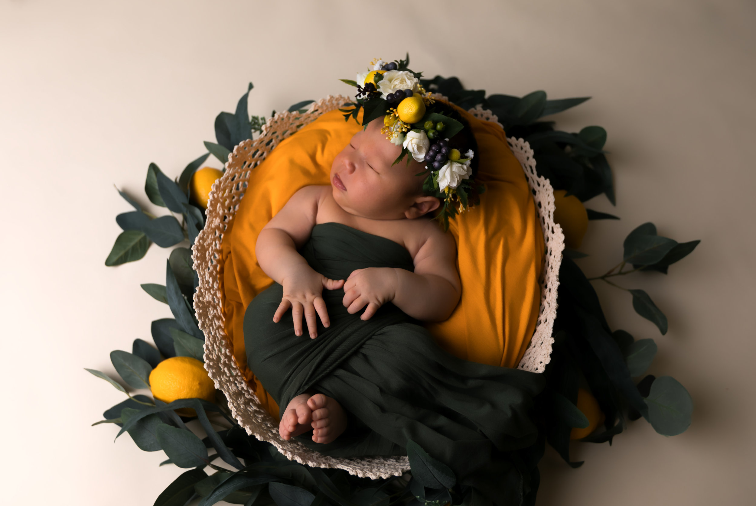 newborn photo shoot newborn studio photography kailua oahu hawaii storm elaine photography-2.jpg