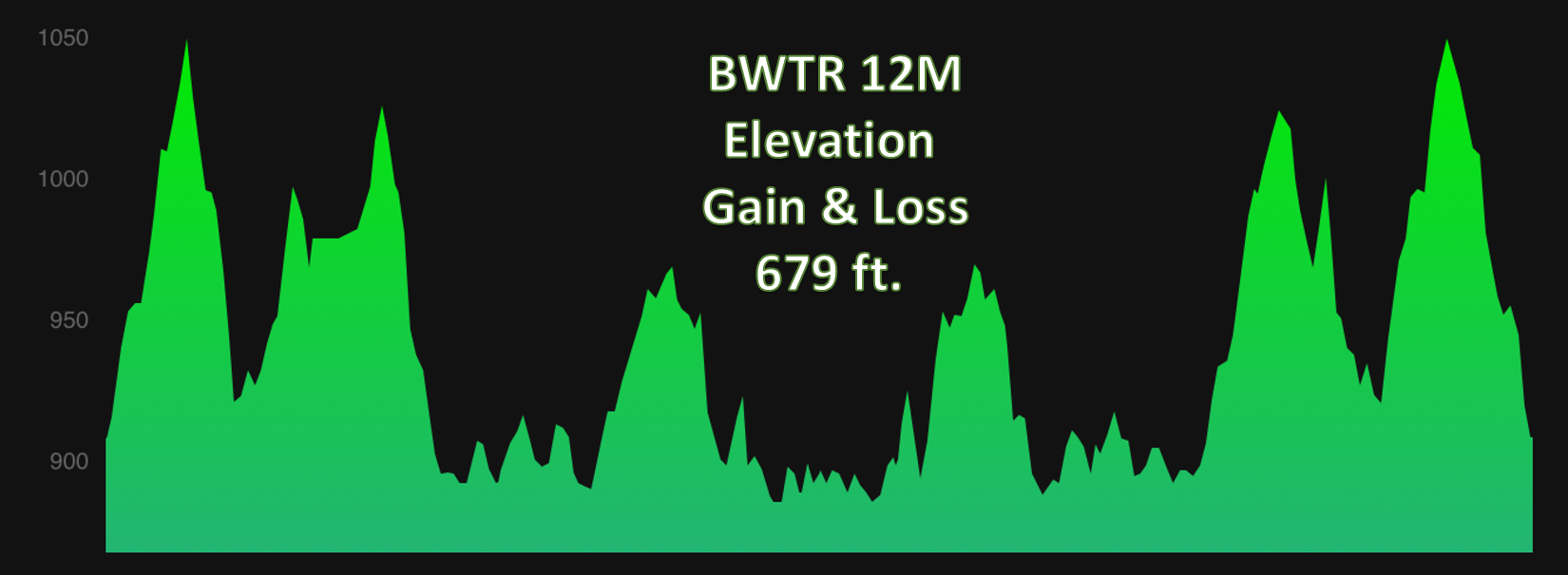 BWTR 12M.png