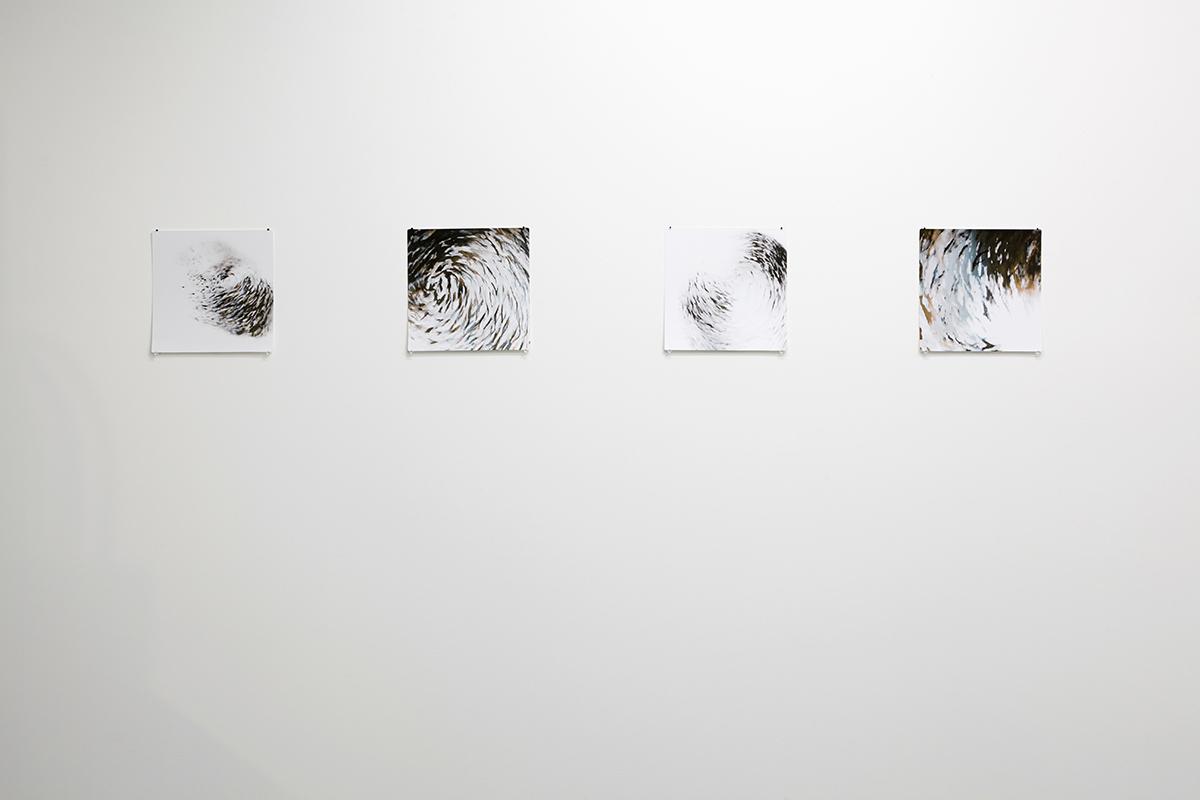 firstdraft-may-2014-patterns-of-thought-photo-by-zan-wimberley-03.jpg