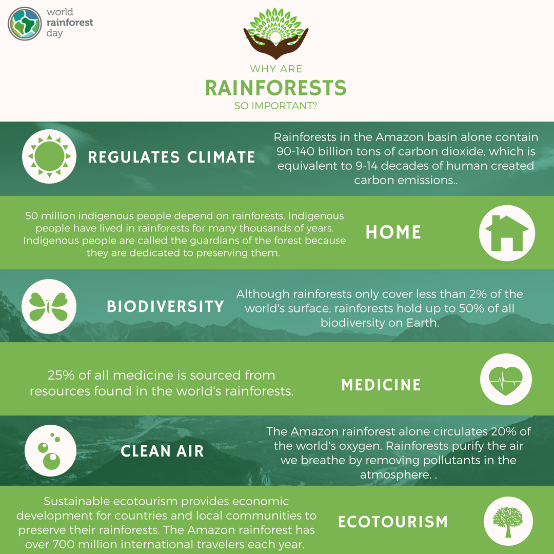 Why-are-rainforests-important.png