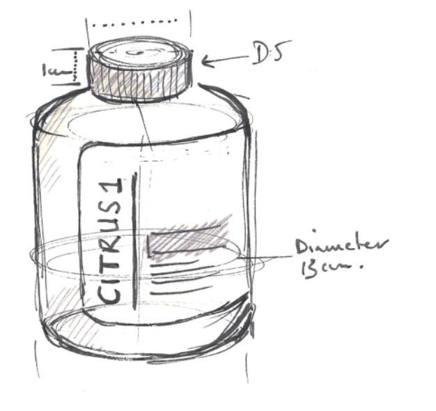 single bottle.jpg