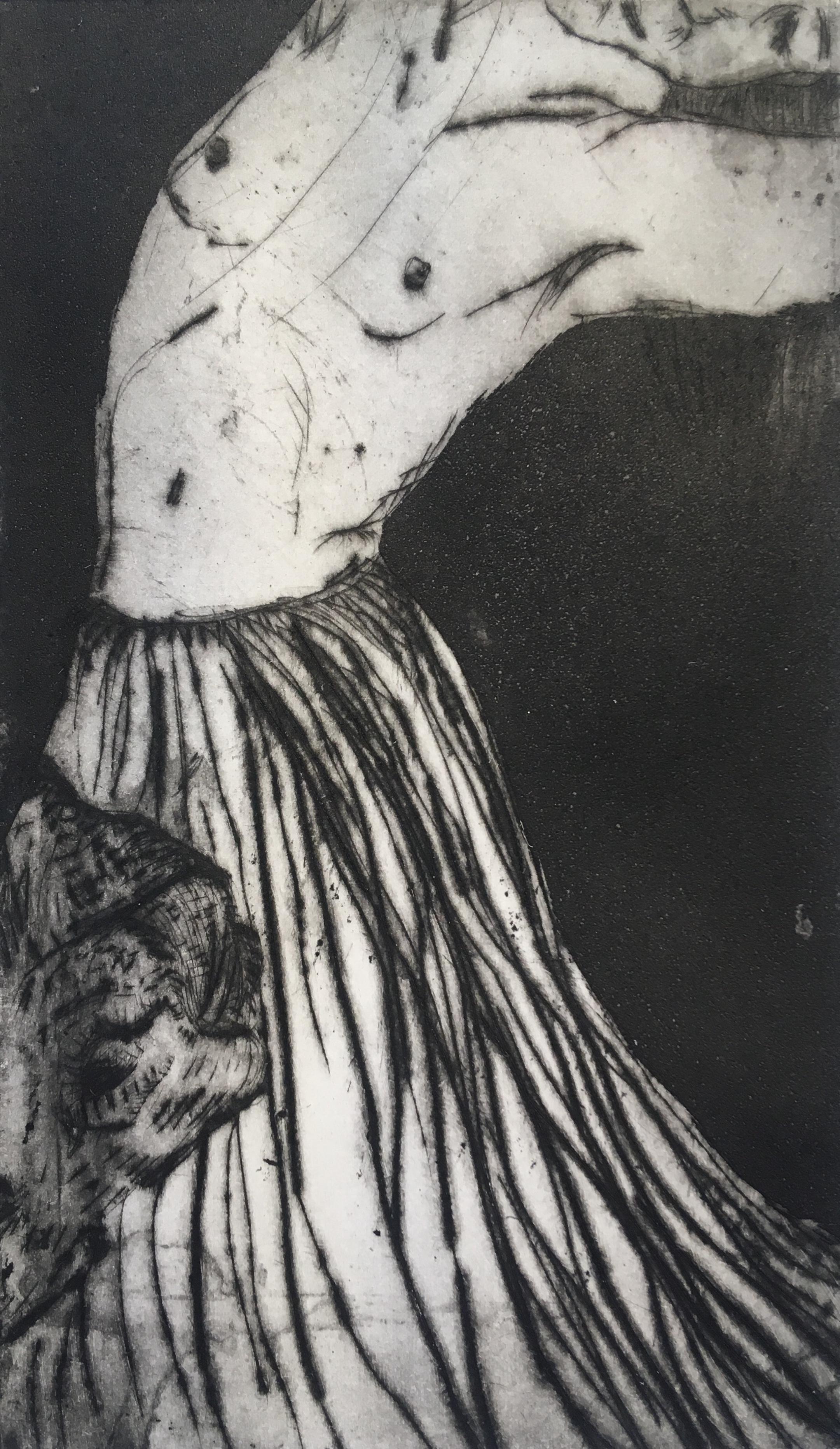 Copy of Carimbó
