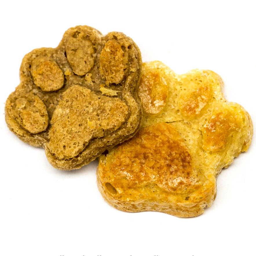 Abby's Famous Dog Treats , Worcester, MA