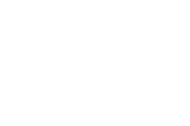 embarccollectivelogo_white copy.png