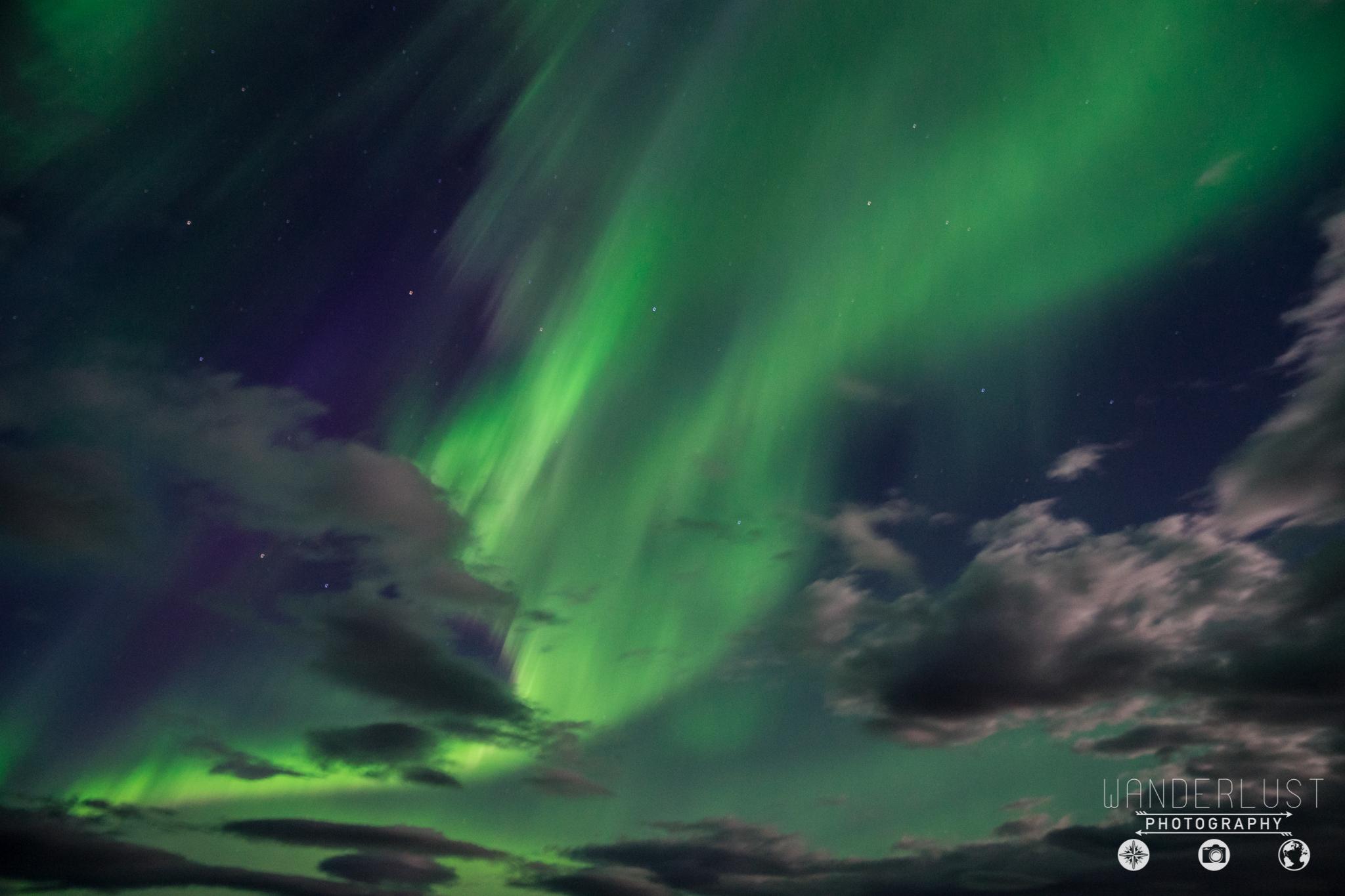 Iceland-07202.jpg