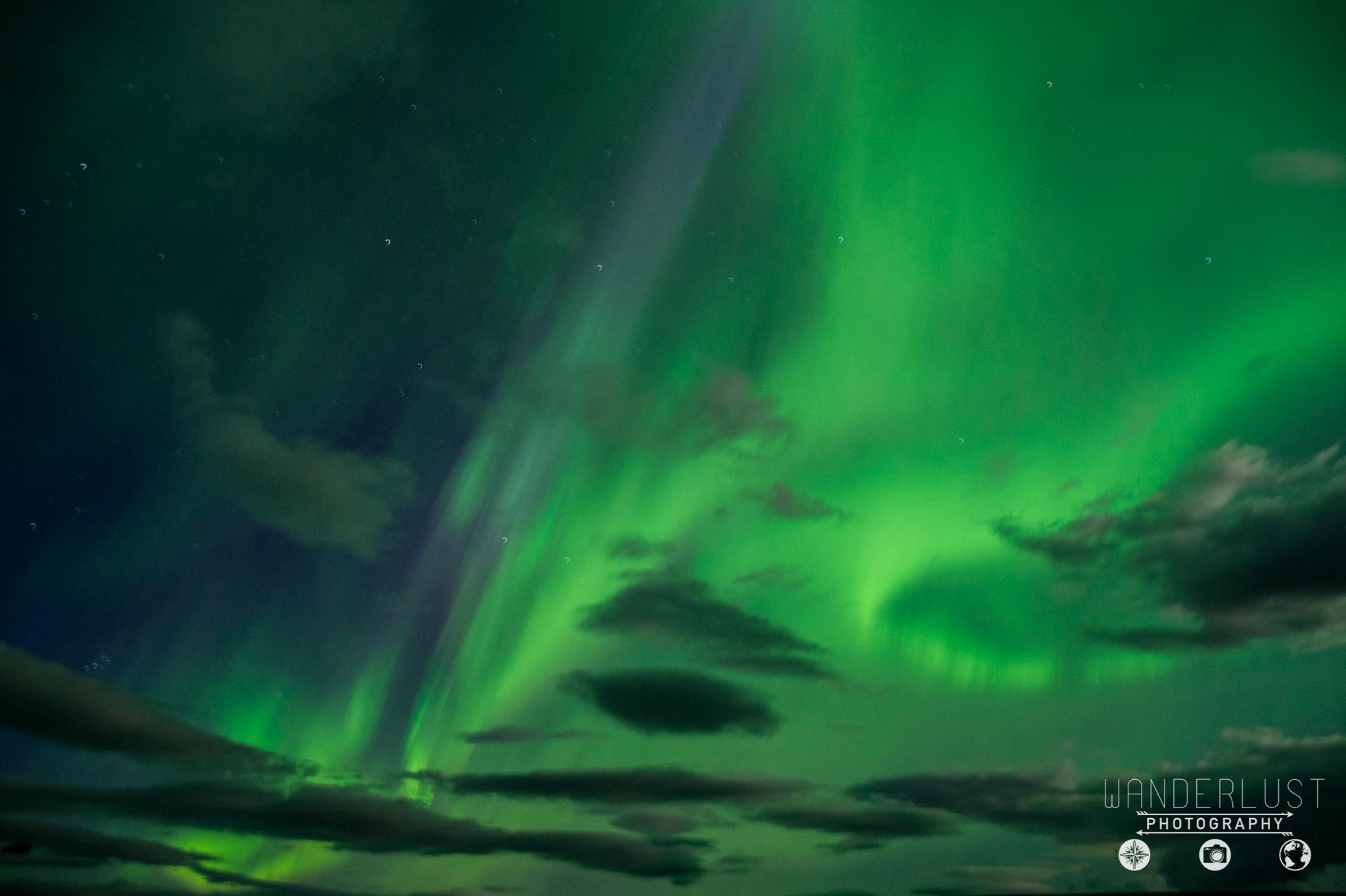 Iceland-07204.jpg