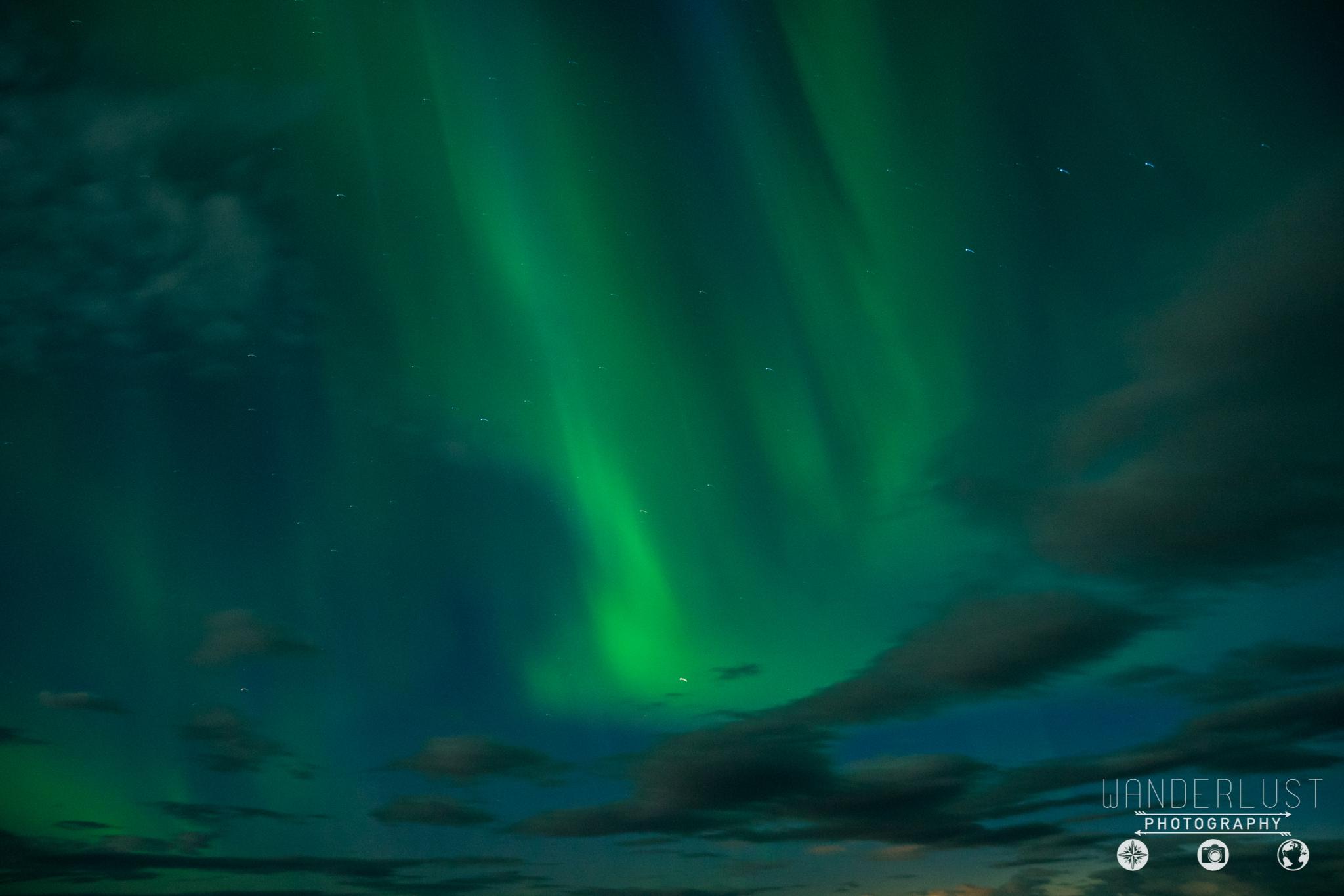 Iceland-07211.jpg
