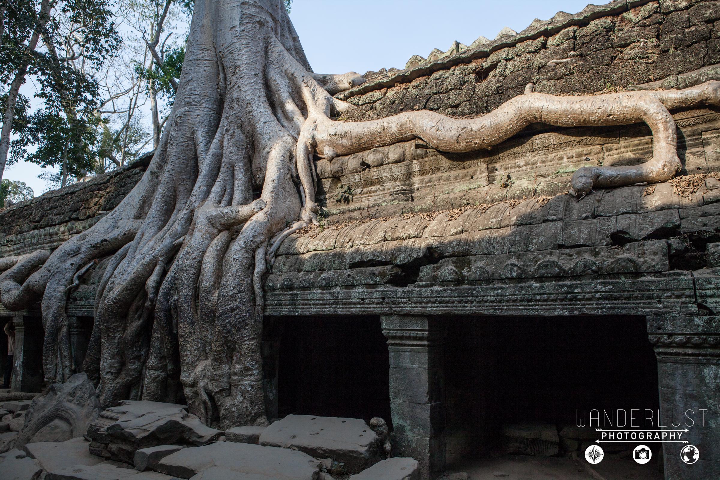 AngkorWat-2484.jpg