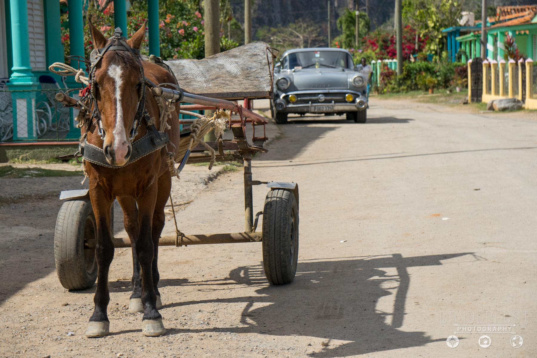 Cuba-00781.jpg