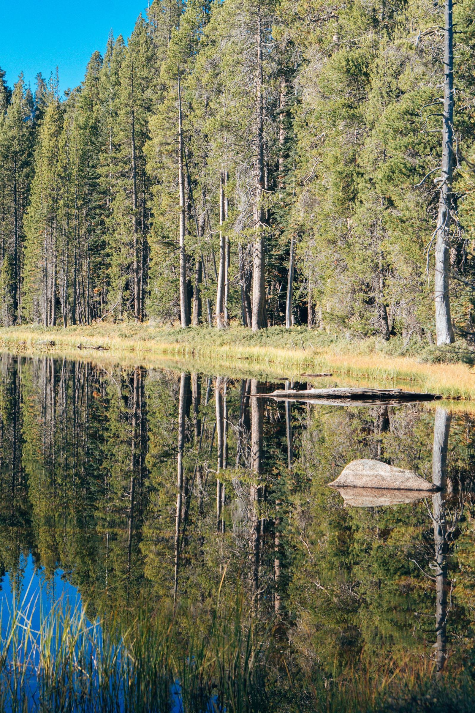 Siesta Lake-05934.jpg