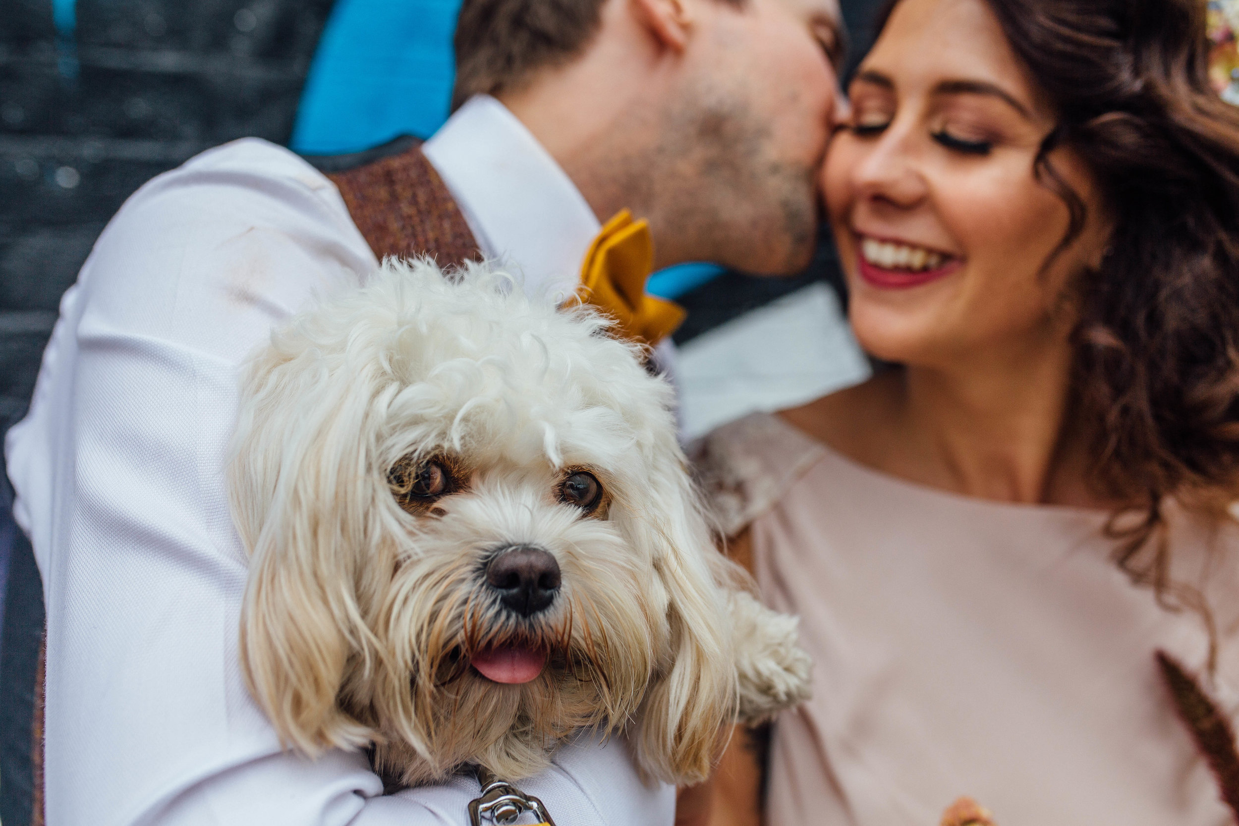 Sheffield Wedding Photographer Dogs at Weddings Abbeydale Picture House