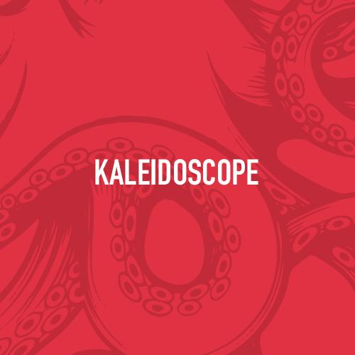 Member_Buckets.Kaleidoscope.jpg