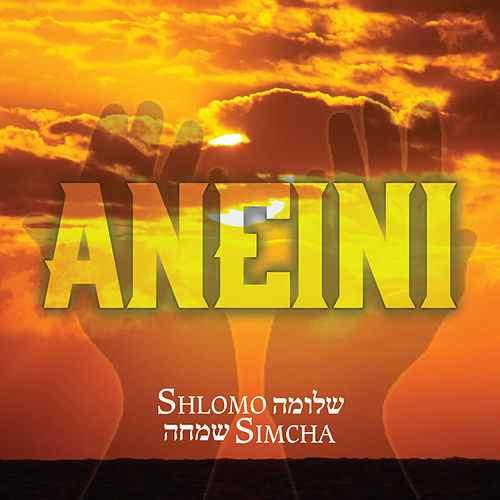 Shlomo Simcha - Aneini Album Cover.jpg