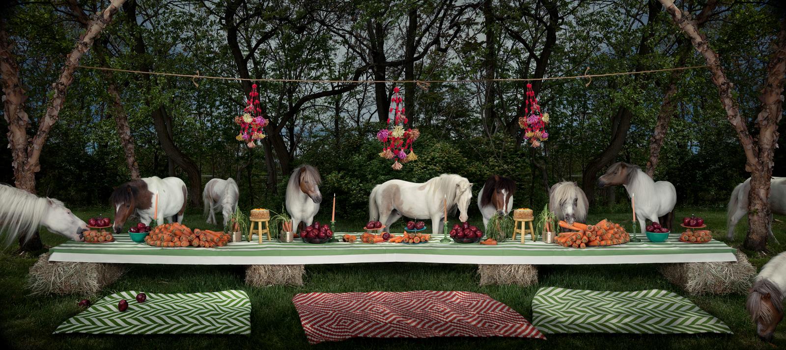 "The Shetland Pony Feast  United States, 2013  10""x22"" | 20""x45"" | 40""x89"""