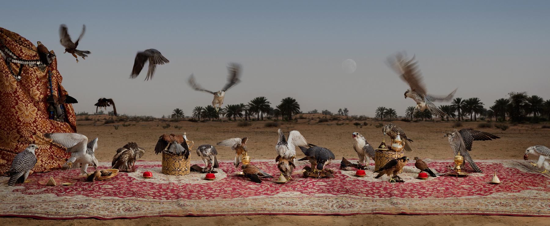 "The Falcon Feast  United Arab Emirates, 2016  10""x24"" | 20""x48.5"" | 40""x97"""
