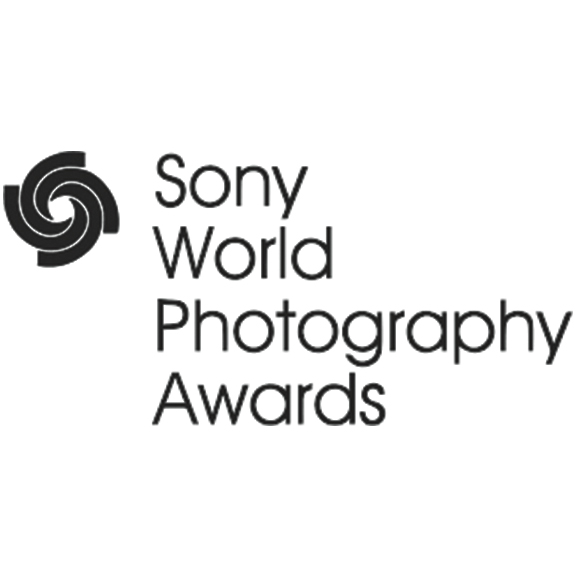 awards_sony.jpg