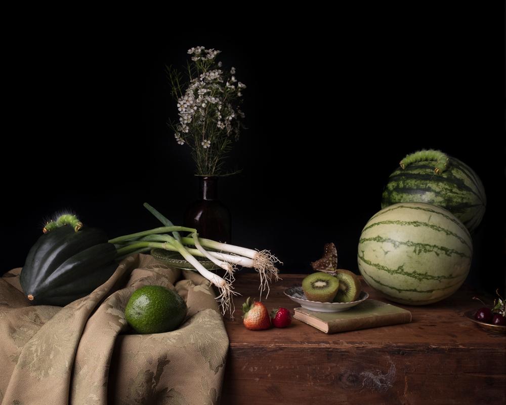 greencatapillar_crop.jpg