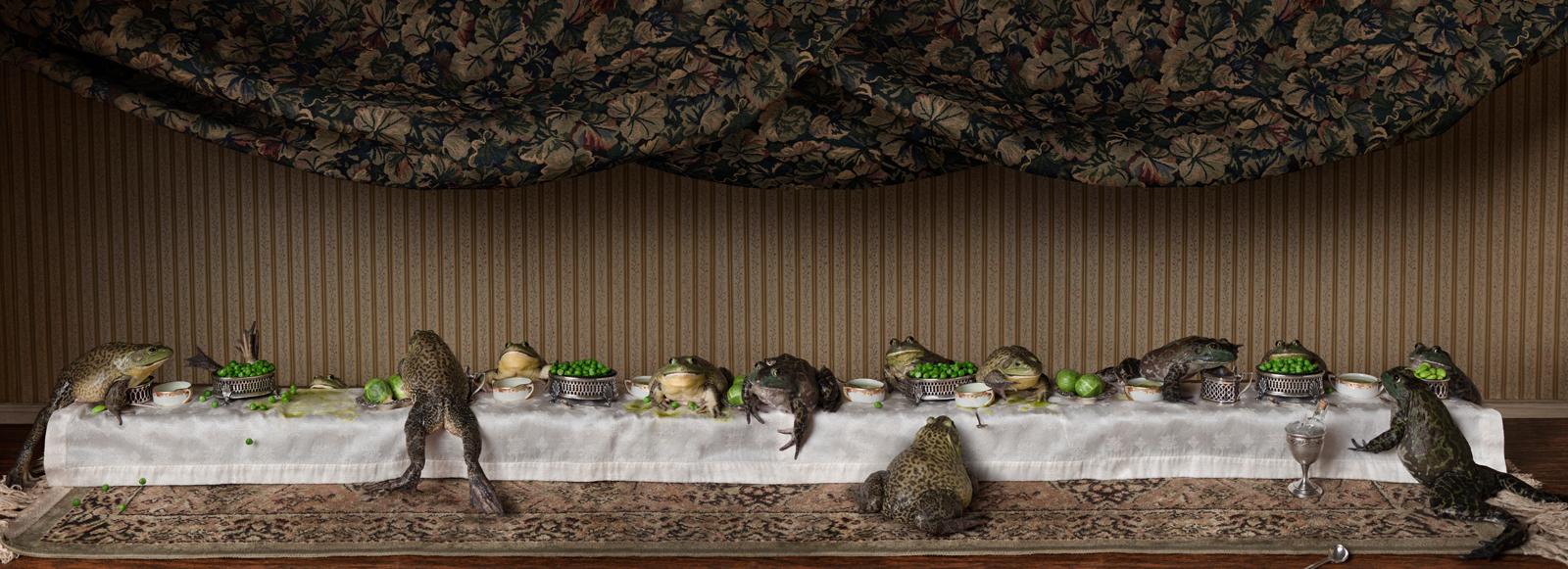 The Bullfrog Feast  United States, 2014