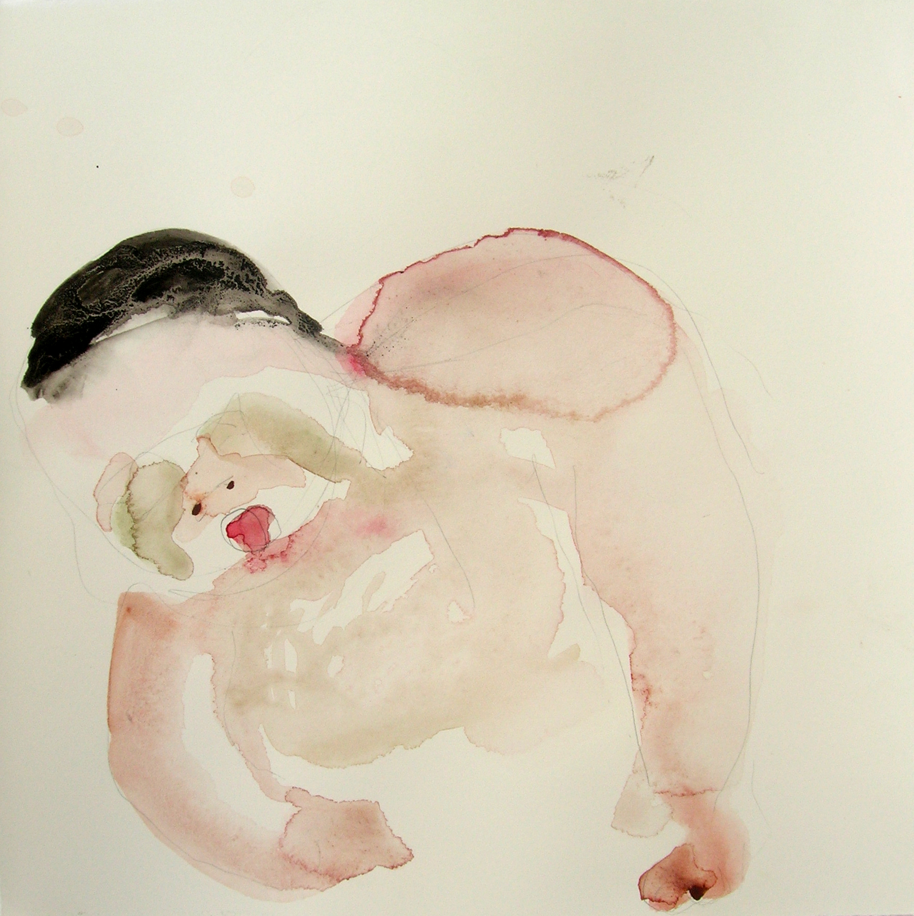 Sentar 25, 2007, Graphite and watercolor on paper, 13 X 12 in.