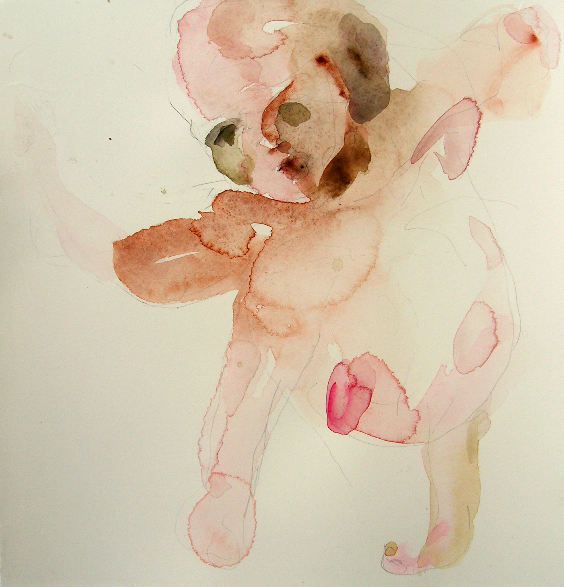 Sentar 28, 2007, Graphite and watercolor on paper, 13 X 12 in.