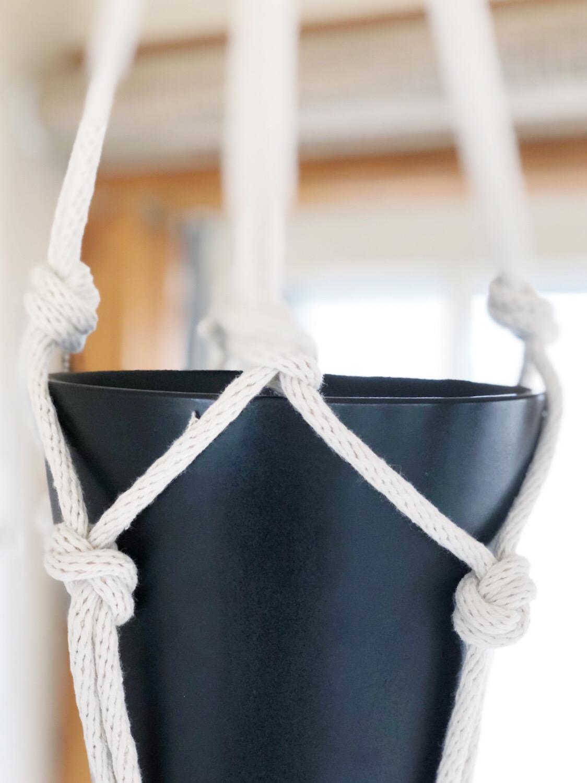 black pot in mid century modern plant hanger.jpg