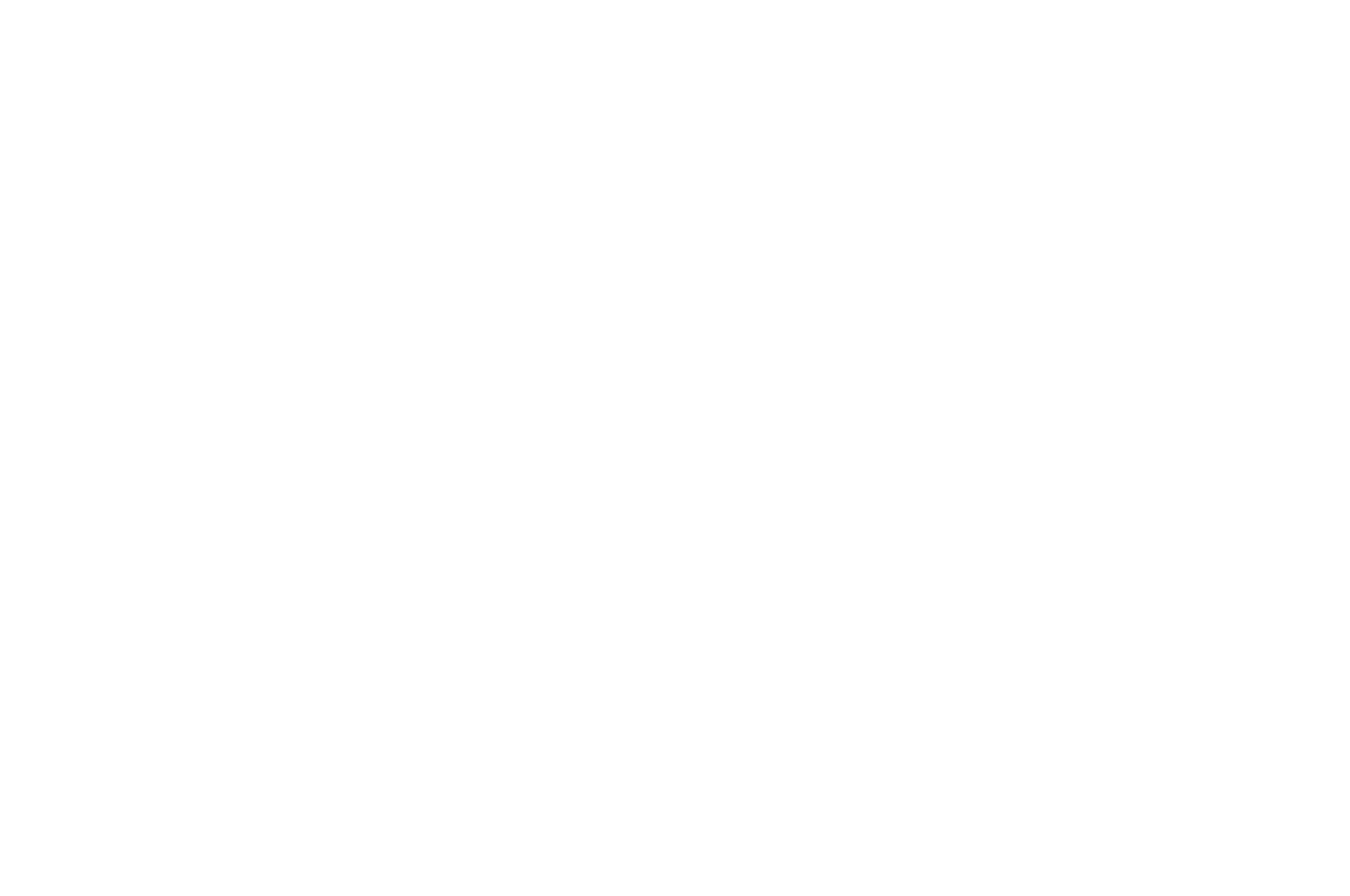 OFFICIAL SELECTION - Justice on Trial Film Festival - 2019.png