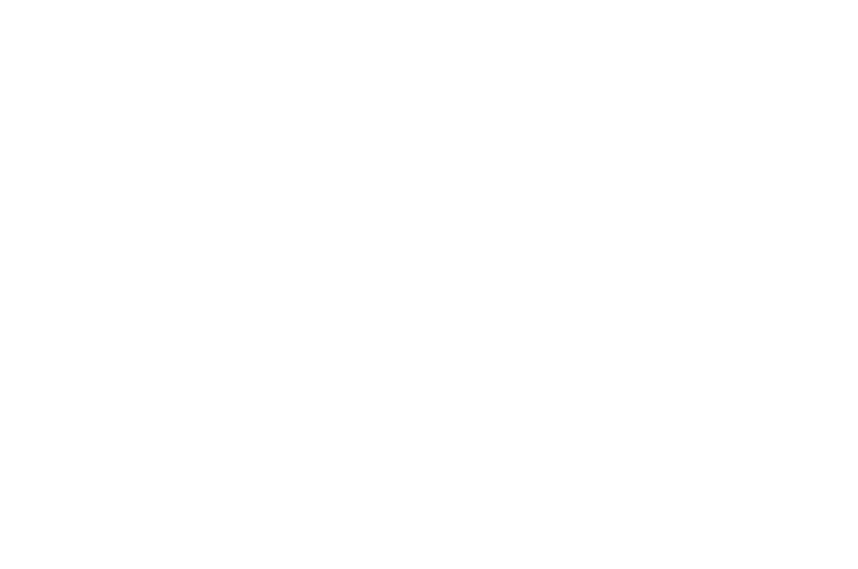 OFFICIAL SELECTION - InJustice for All Film Festival - 2019.png