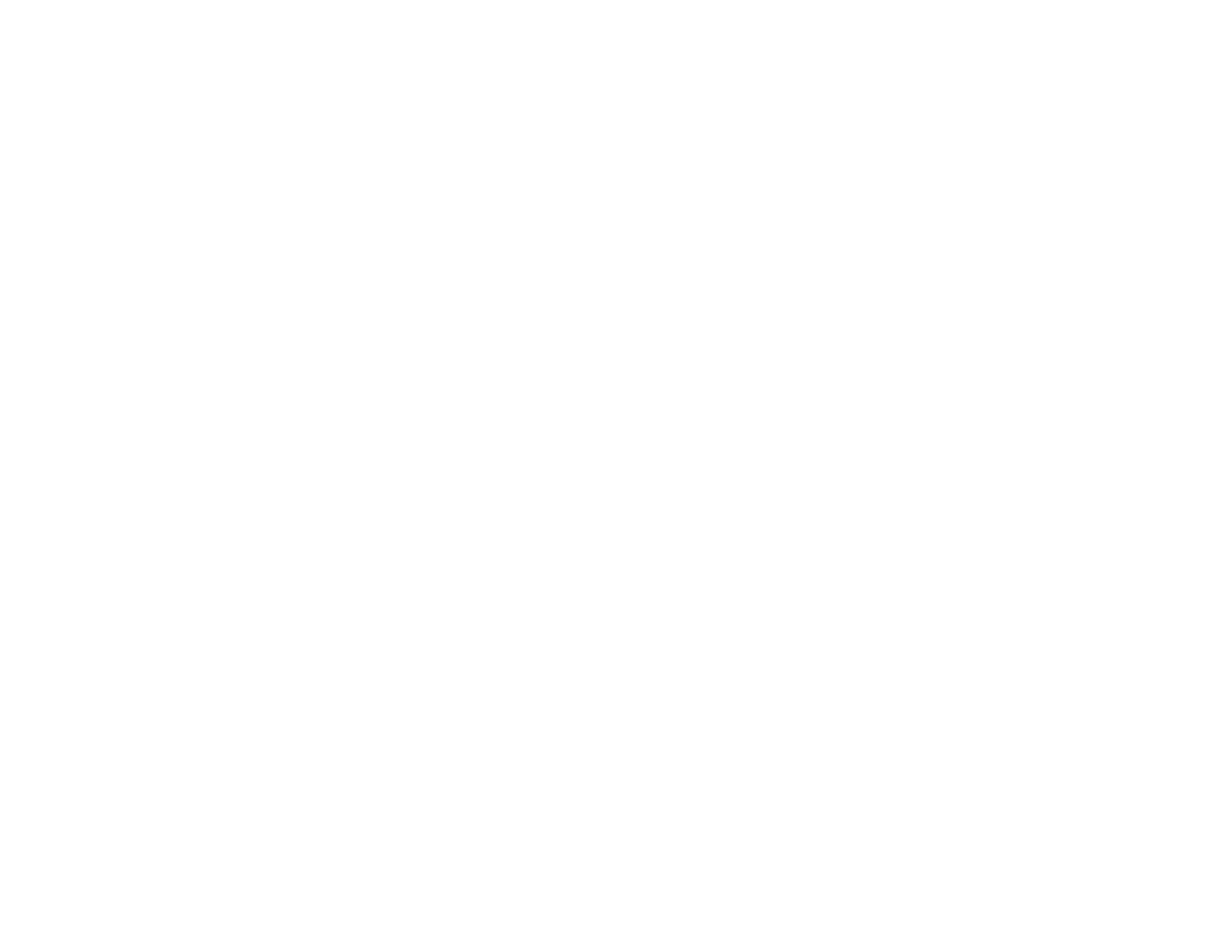 WUFF 2019 - Honorable Mention Doc Short 1.png