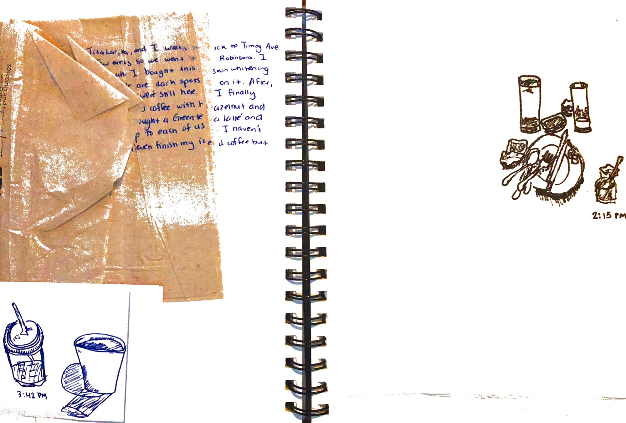 Journal Scans page 10.JPG