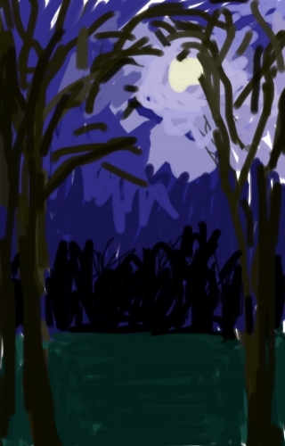Moonlit Sky, Brushes App, iPhone