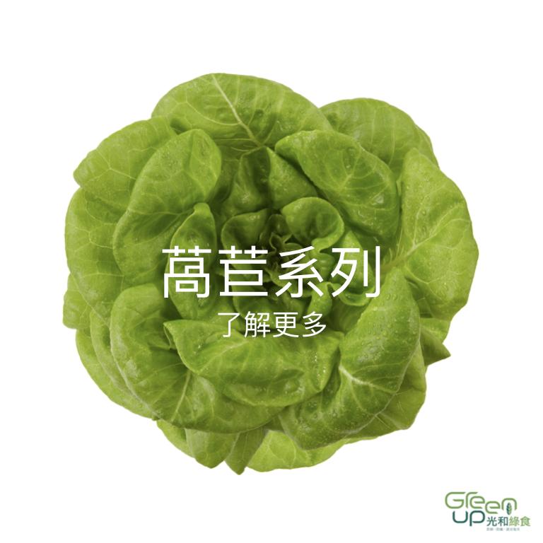 蔬菜介紹 首頁按鈕.002.jpeg