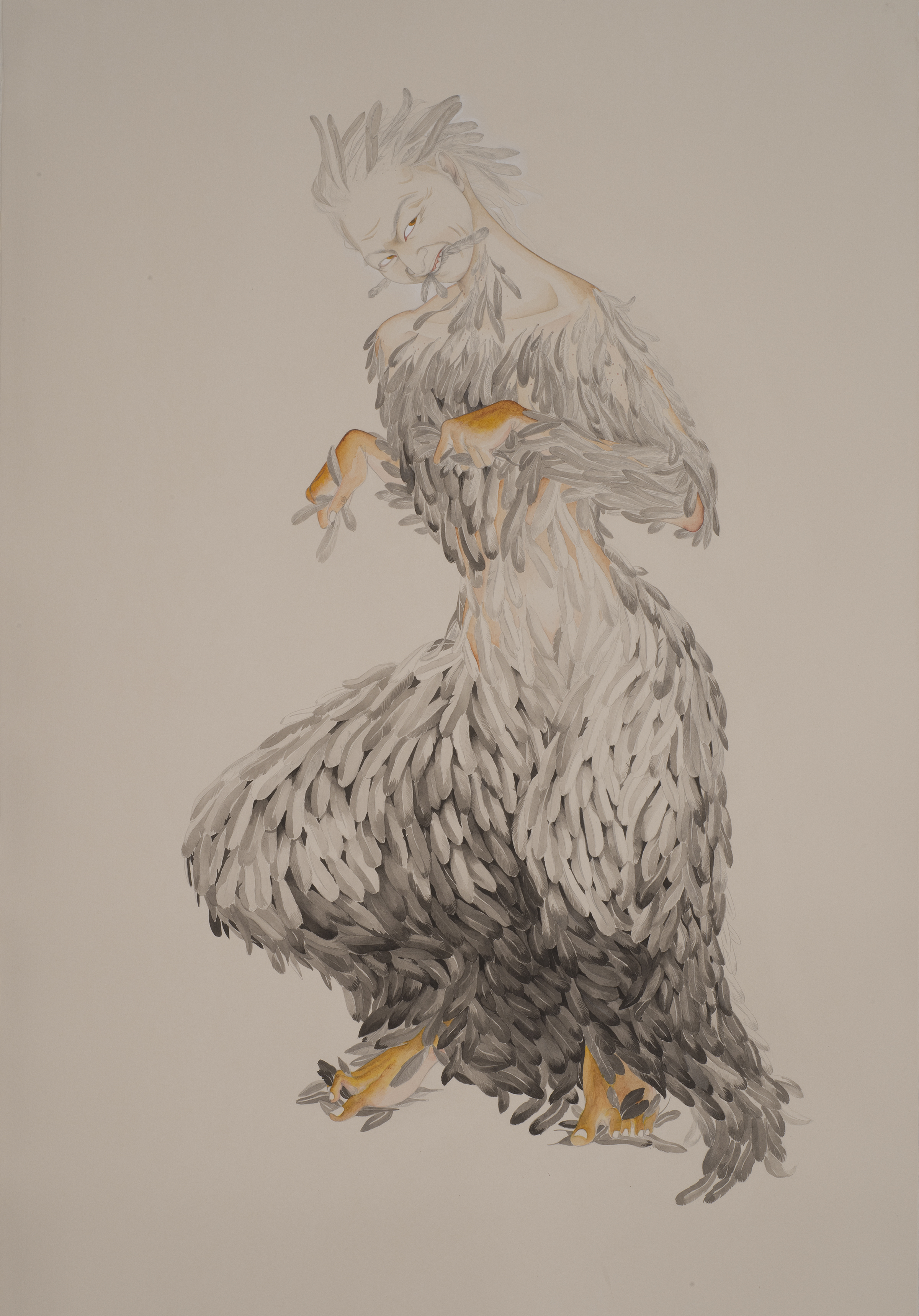 Preen , 2013 Graphite, watercolor, ink on ivory Fabriana Rosaspina 39 x 27.5 inches Photo: Bill Orcutt