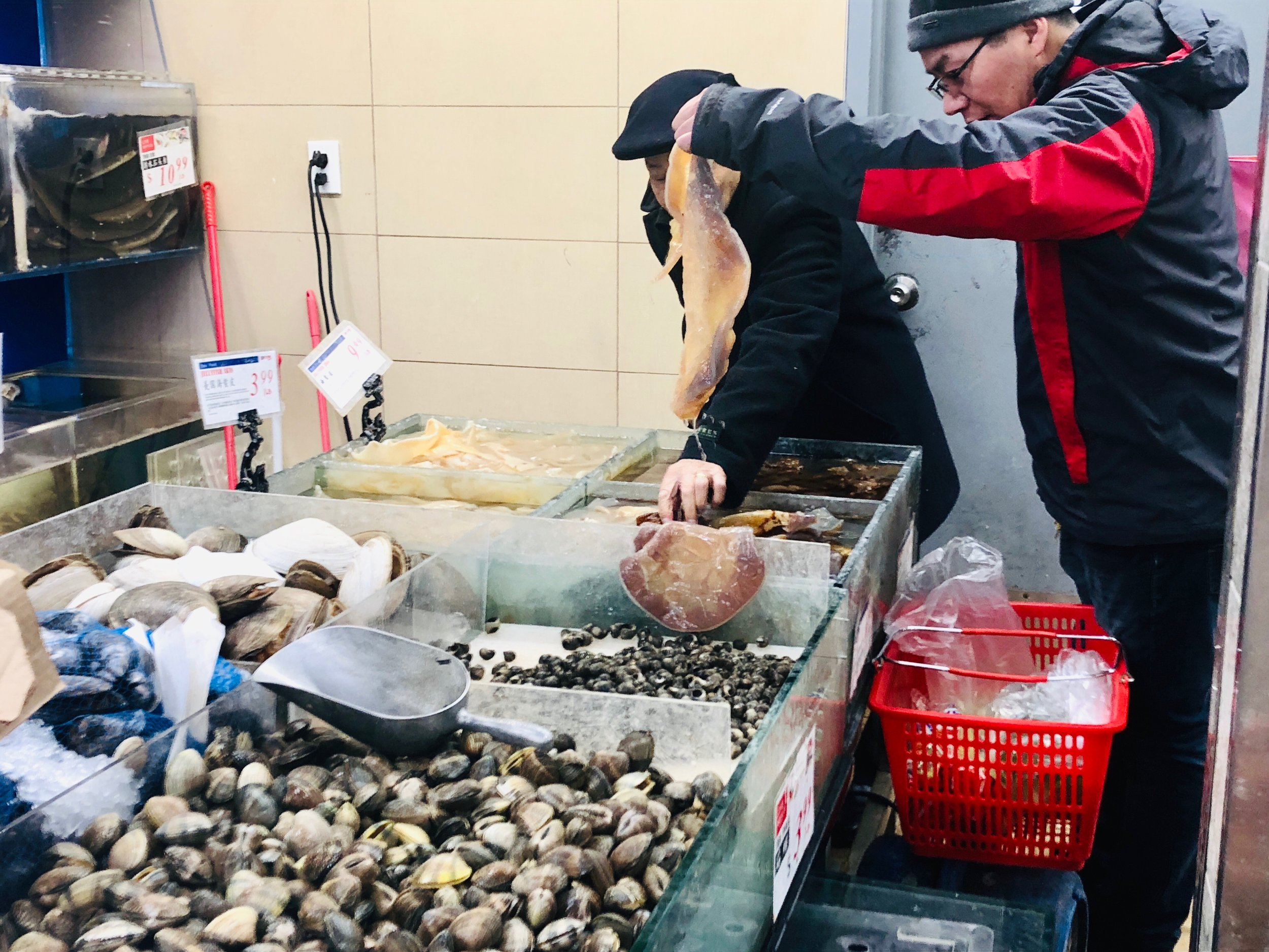 Men investigating a specimen for their jellyfish purchase. Flushing, Queens.