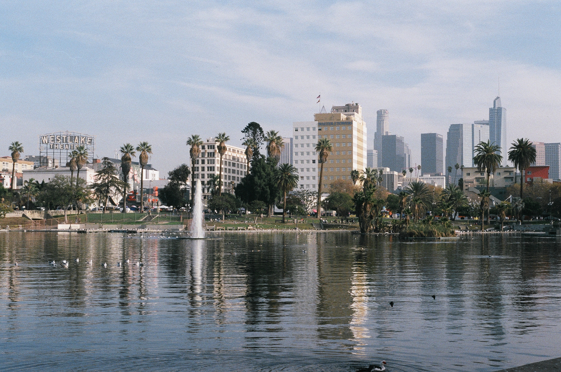 MacArthur Park, Los Angeles.  Pentax K1000. Fujifilm Superia. Fletcher Berryman 2018.
