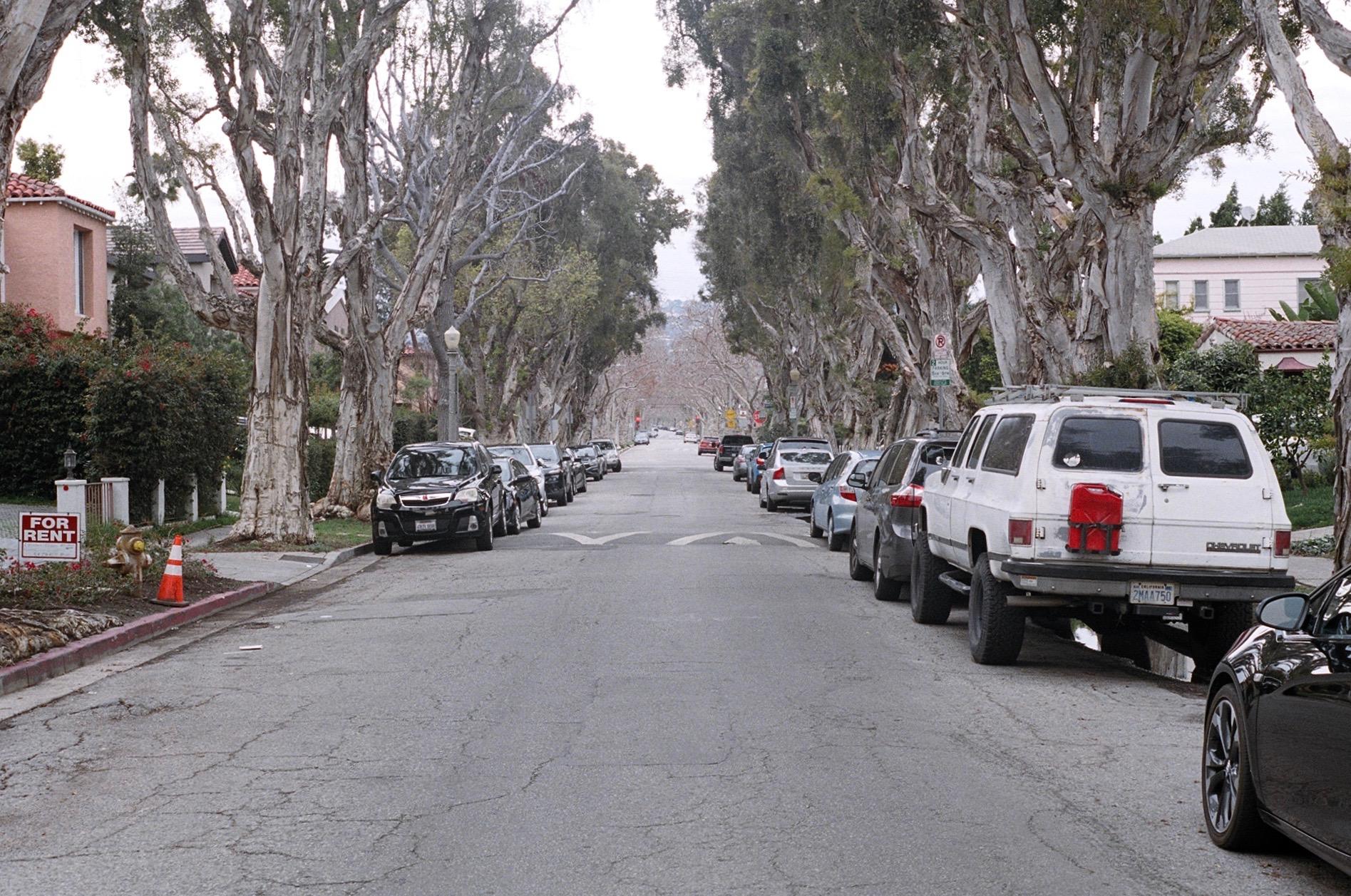 Side street, looking north towards Beverly Hills.  Kodak  Portra 400. Pentax K1000. Fletcher Berryman 2019.