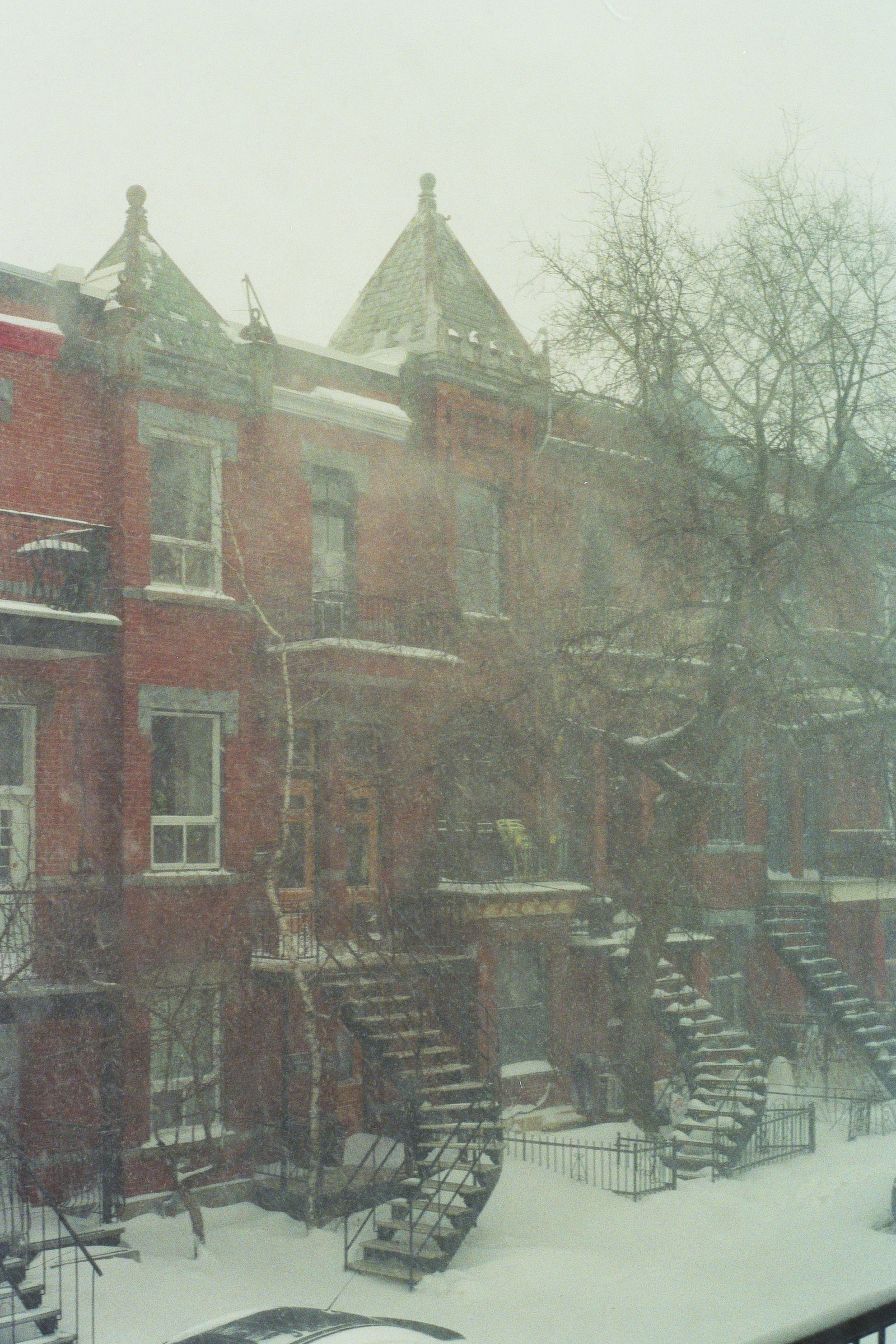 The Storm. Le Plateau, Montreal.  Kodak Ultra Max 400. Pentax K1000. Fletcher Berryman 2019.
