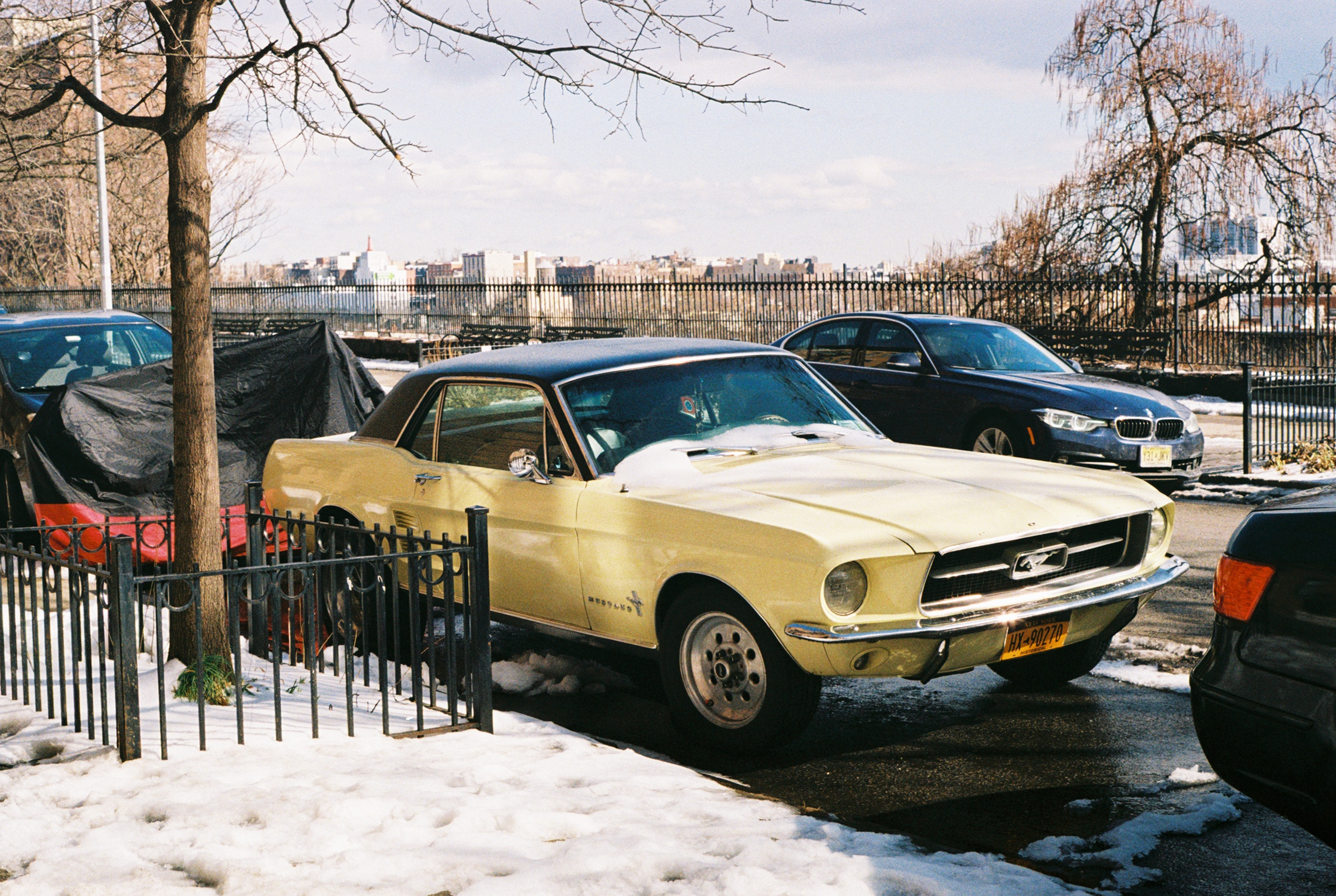 Sugar Hill, with The Bronx off in the distance.  Kodak Ultra Max 400. Pentax K1000. Fletcher Berryman 2019.