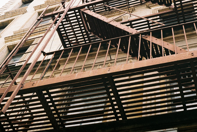 Finches perched on a fire escape, just hangin'. Sugar Hill, Manhattan.  Kodak Ultra Max 400. Pentax K1000. Fletcher Berryman 2019.