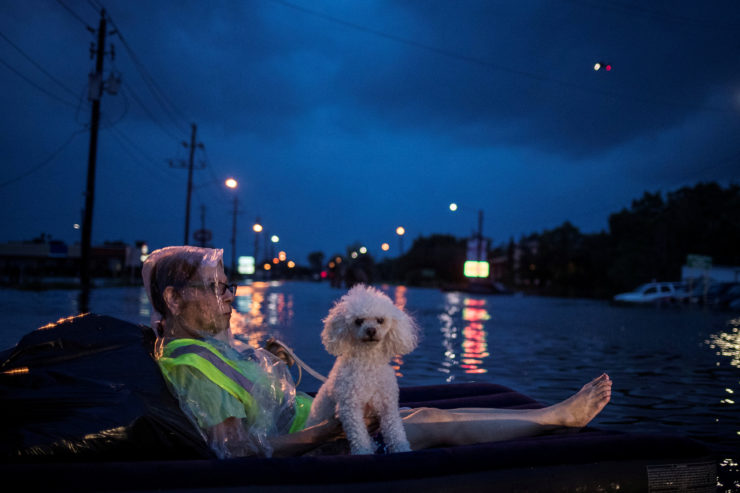 A rescue helicopter hovers in the background as a woman and her poodle use an air mattress to float above flood waters from Hurricane Harvey while waiting to be rescued from Scarsdale Boulevard in Houston  [Photo: Adrees Latif / Reuters]