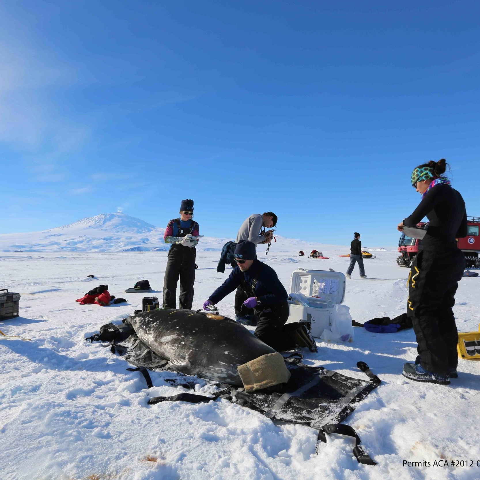 RURAL AND REMOTE - Northern and rural communities, the Arctic and Antarctic