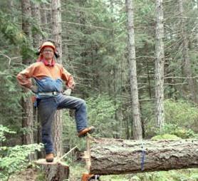 Timber Harvest 2017 Peter.jpg
