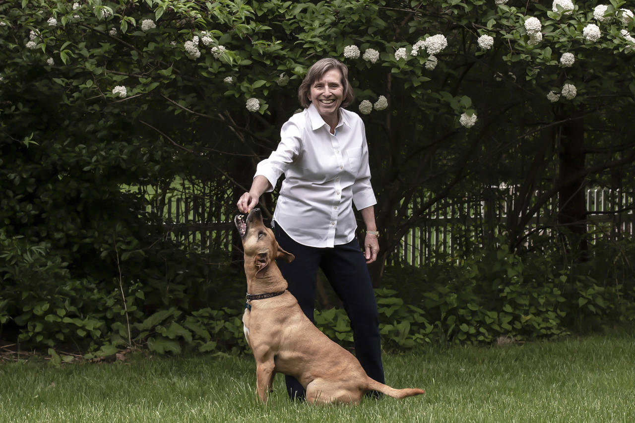 Owner Barbara Hightower has Moose 'sit and stay' to earn CBD treats that help with his anxious jitters. PHOTO: BRYAN ANSELM FOR THE WALL STREET JOURNAL