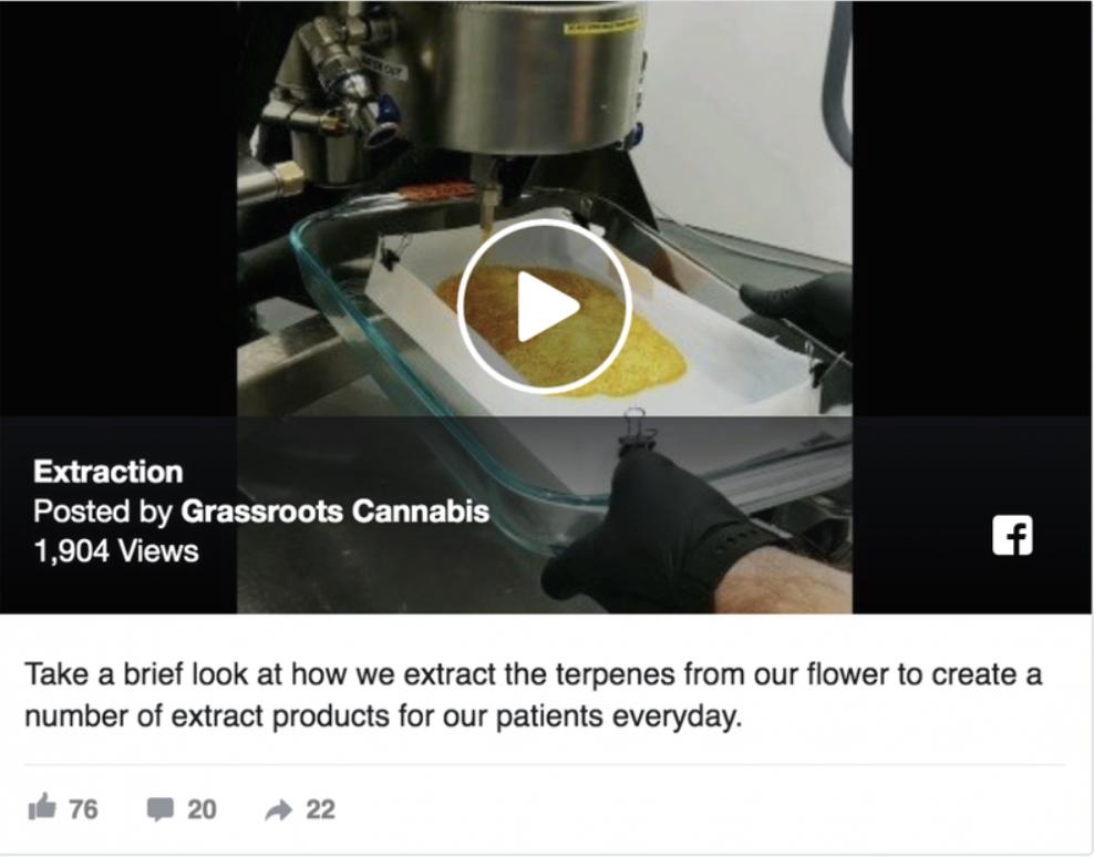 Grassroots Cannabis on Facebook  FACEBOOK.COM/GRASSROOTSMMJ