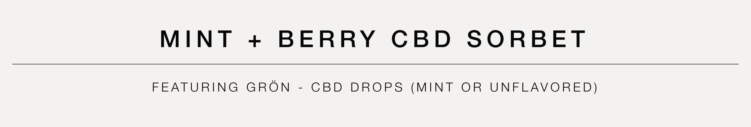MINT + BERRY CBD SORBET BANNER.jpg