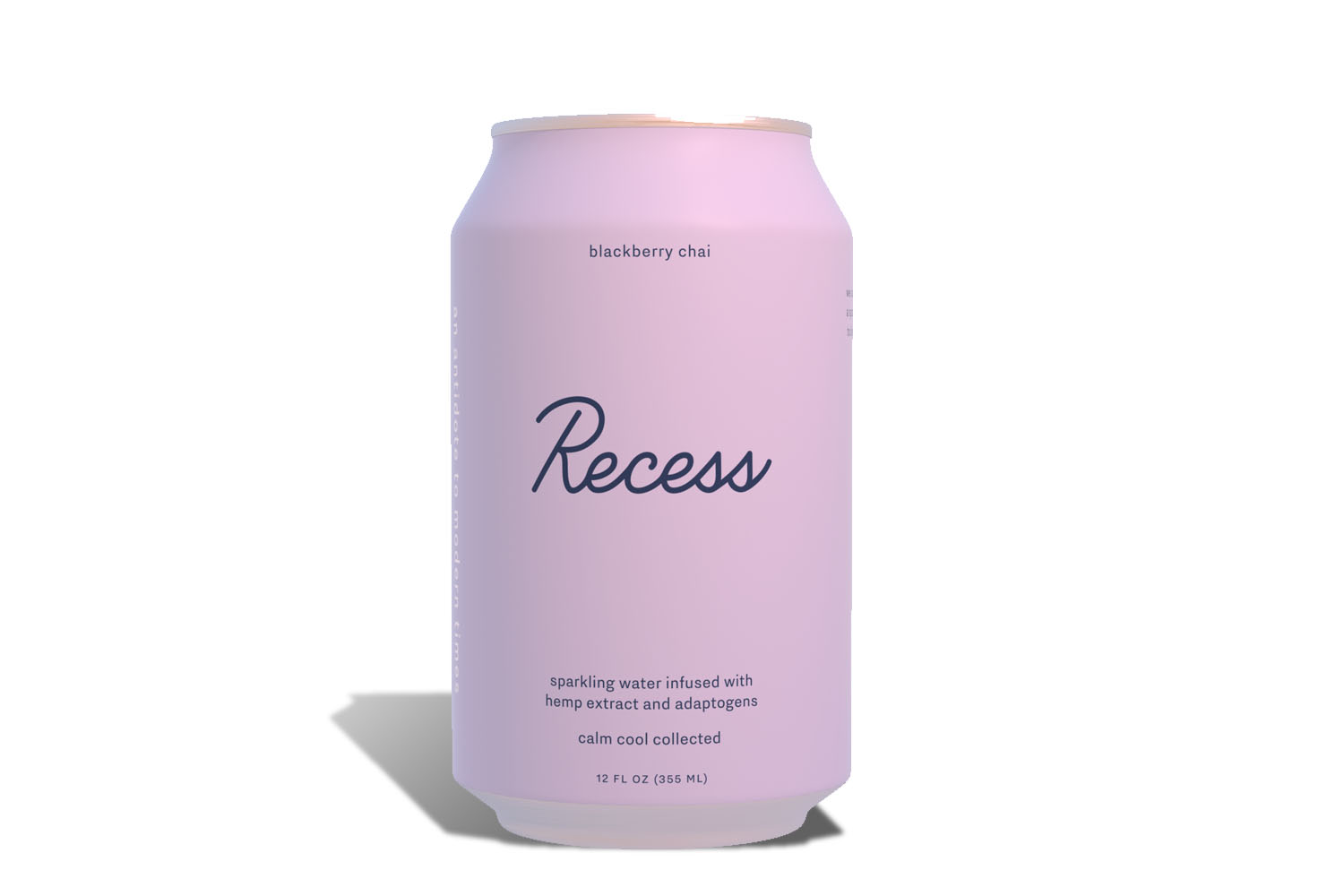 RECESS PRODUCT SHOTS.PURPLE.jpg